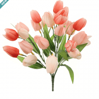 Pink & Blush Tulip Bush by Ashland�