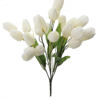 Cream Tulip Bush by Ashland®