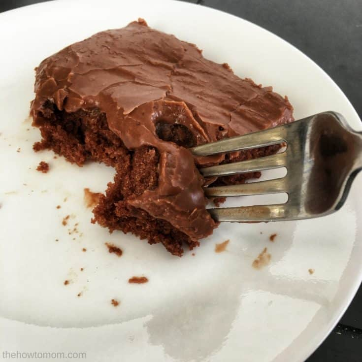 The BEST Texas Sheet Cake - Fudgey and Delicious!
