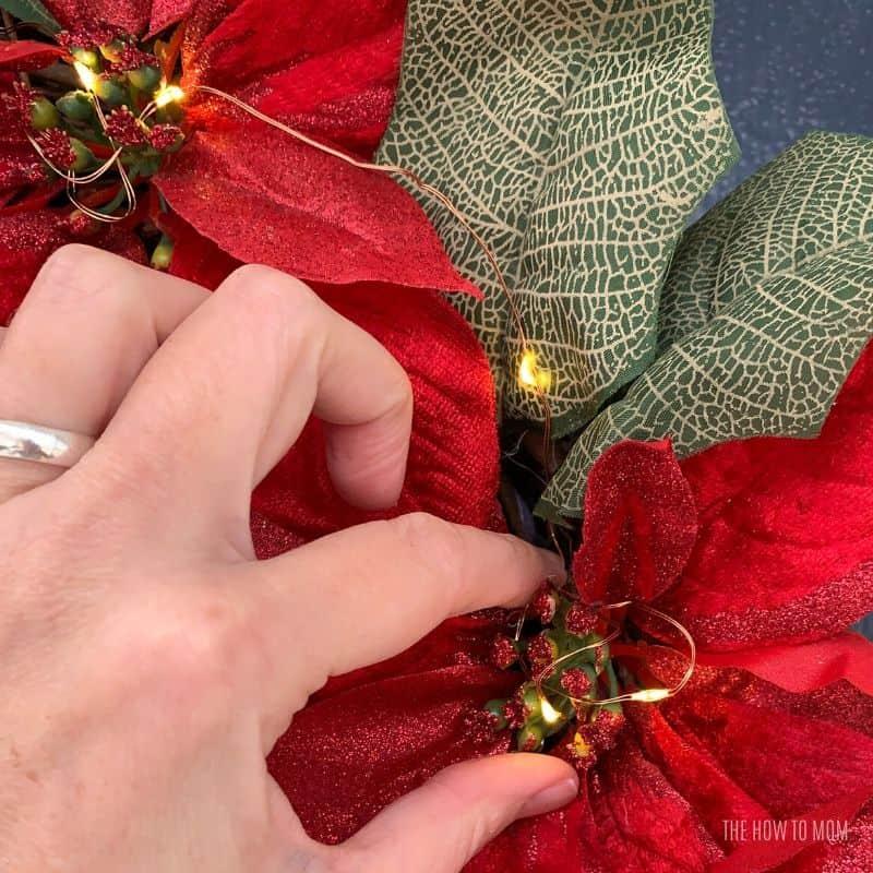 fairy lights nestled into poinsettia blooms