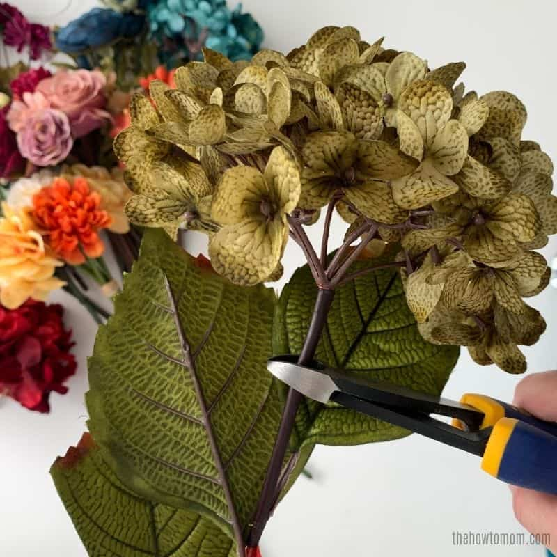 cut fall flowers