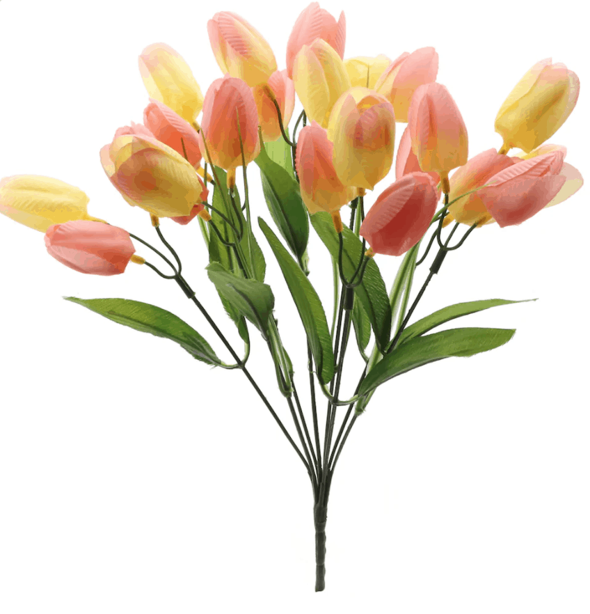 Peach Tulip Bush by Ashland�