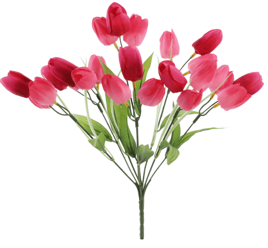 Hot Pink Tulip Bush by Ashland�