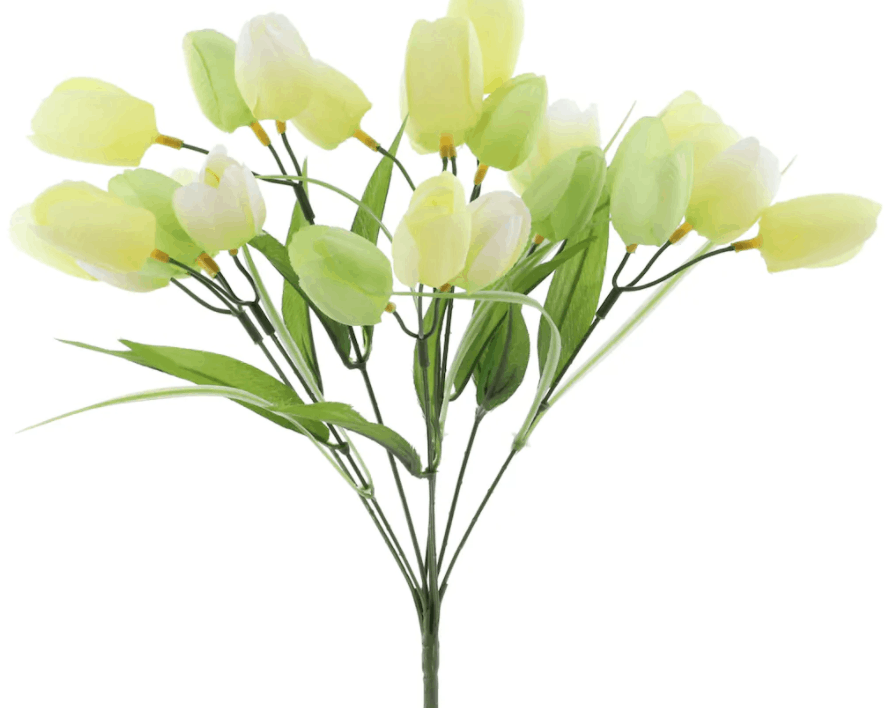 Green & Cream Tulip Bush by Ashland�