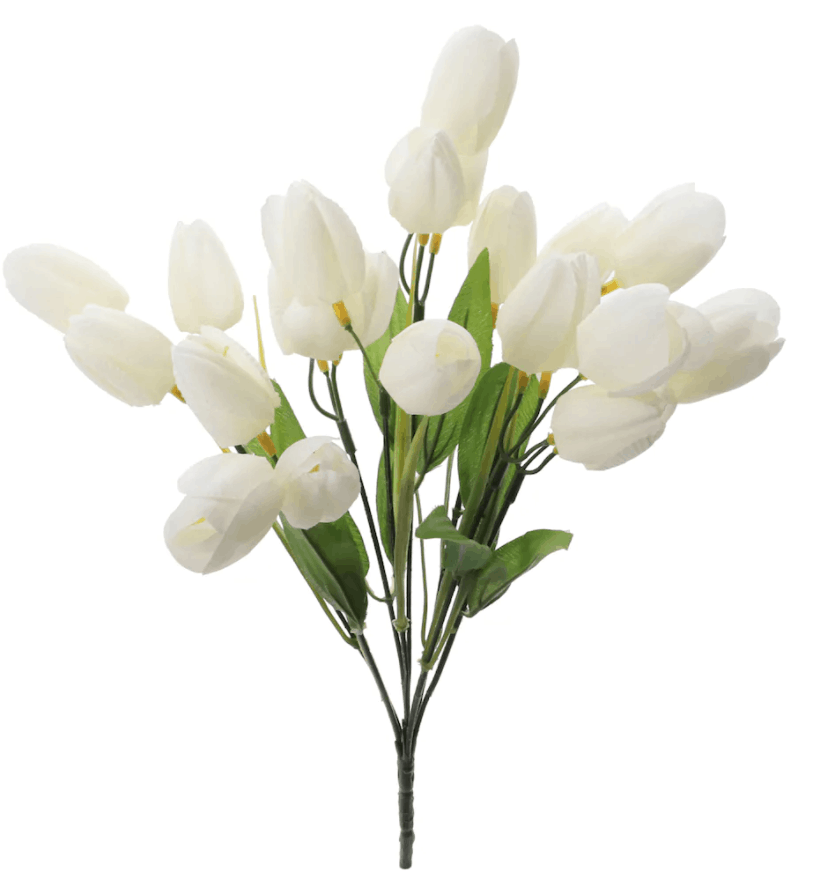Cream Tulip Bush by Ashland�