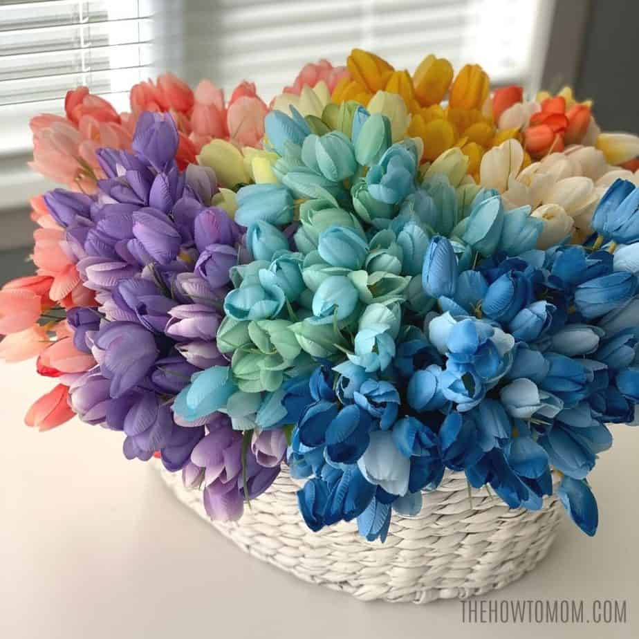 rainbow mini tulips